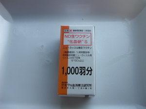 Cimg2389